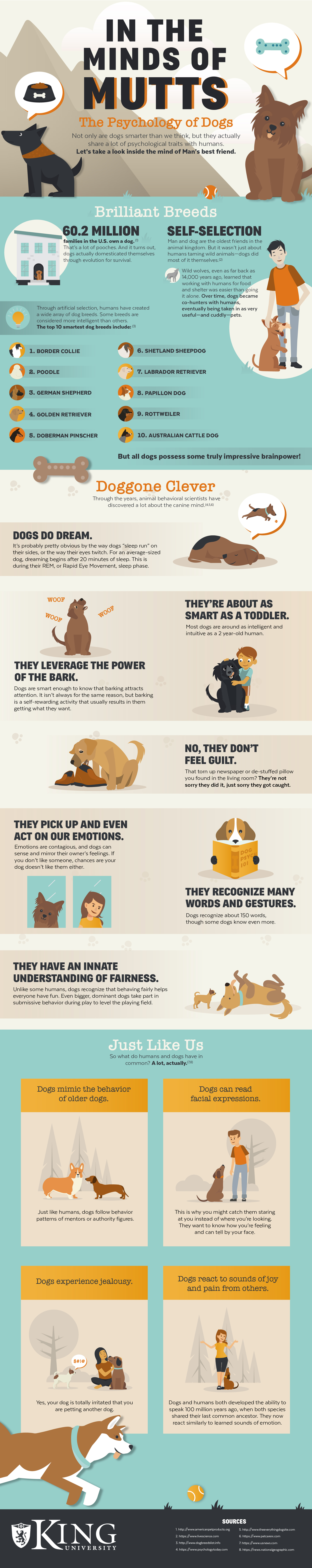 The Psychology of Dogs Infographic
