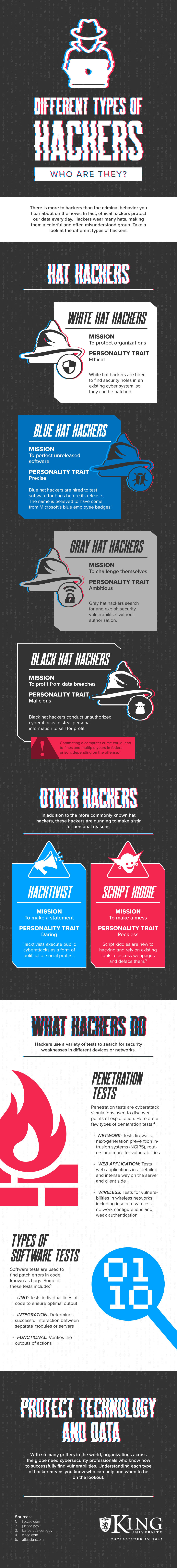 Different Types of Hackers Infographic